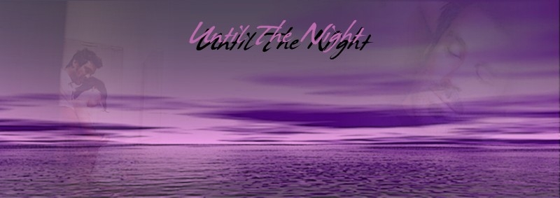 Until the Night Banner