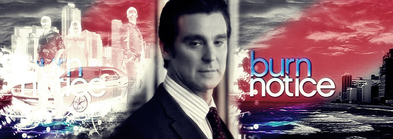 Burn Notice Banner by Julie