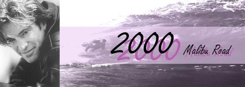 2000 Malibu Road Banner by Merian H.