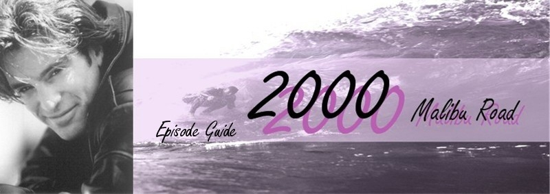 2000 Malibu Road Episode Guide Banner by Merian H.