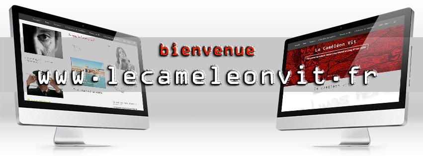 Le Caméléon Vit Website